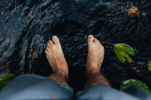 feet toes limbs legs